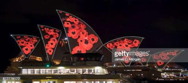 Poppies are projected onto the sails of the Opera House on November 11 2017 in Sydney Australia To mark Armistice Day the world famous building in...