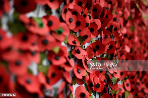 Poppies are stuck on the wall ahead of the Rememberance Day outside the stadium prior to kick off during the Premier League match between Tottenham...