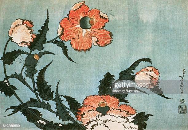 Poppies by Katsushika Hokusai