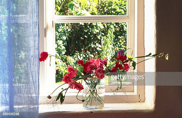 Poppies in vase on windowsill