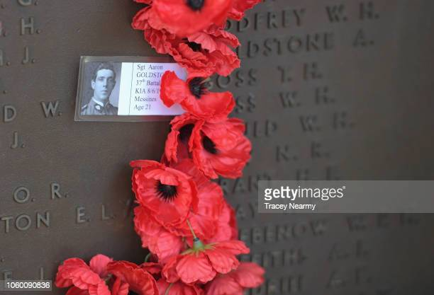 Poppies line the walls of the Australian War Memorial Roll of Honour during the Remembrance Day Service at the Australian War Memorial on November 11...