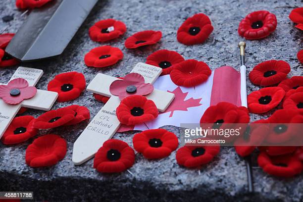 Poppies on the Tomb of the Unknown Soldier after this morning's Remembrance Day ceremony November 11 2014 in Ottawa Canada An estimated 50000 or more...