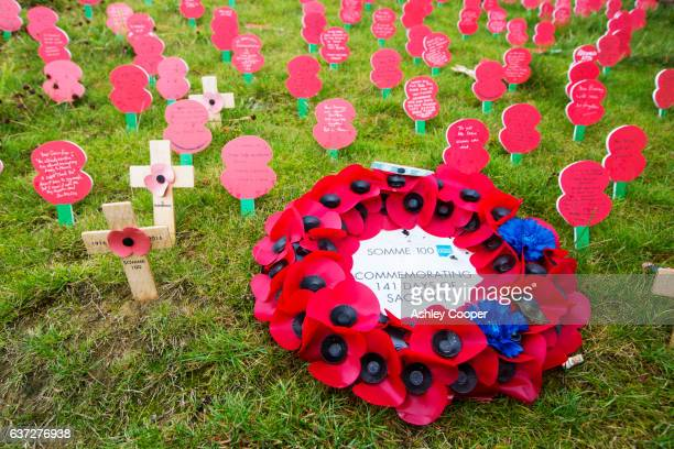 poppies to mark the centenery of the battle of the somme at the thiepval memorial, a massive memorial to commemorate the 72,000 missing soldiers who dies in the battle of the somme in the first world war, thiepval, france. - thiepval stock pictures, royalty-free photos & images