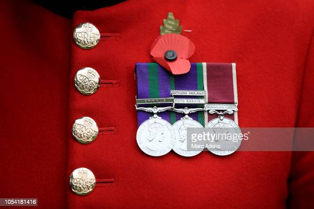 Poppy and medals are pictured on the jacket of a Chelsea Pensioner prior to the Premier League match between Fulham FC and AFC Bournemouth at Craven...
