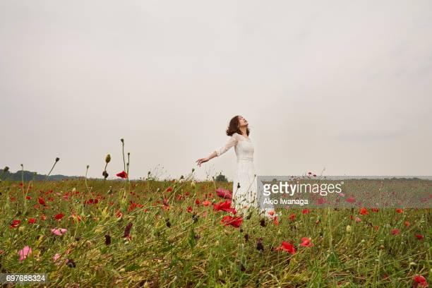 poppy and women - akio iwanaga ストックフォトと画像