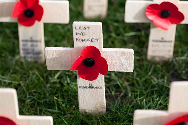 Poppy Crosses in the Field of Remembrance, Edinburgh