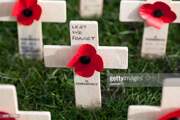 poppy crosses in the field of remembrance, edinburgh - remembrance sunday stock photos and pictures