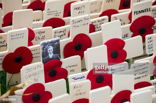 poppy day - lest we forget stock photos and pictures