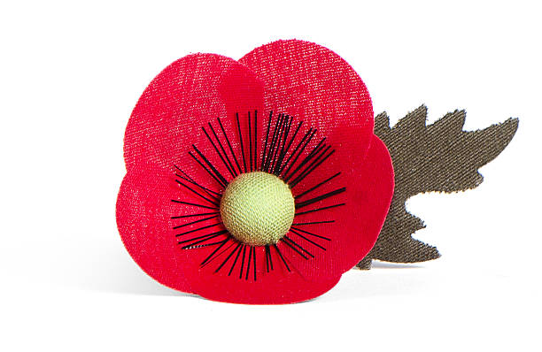 Free plastic poppy images pictures and royalty free stock photos poppy flower made from febric mightylinksfo