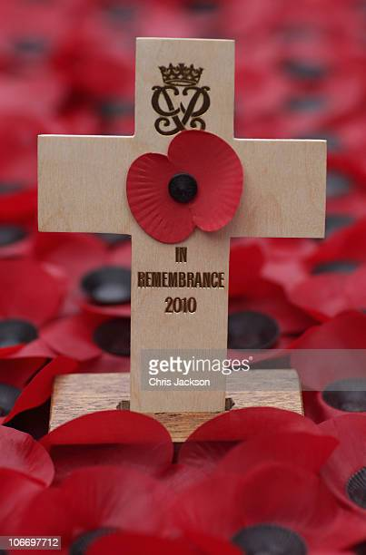 Poppy laid by the Duke of Edinburgh is seen in front of Westminster Abbey in the Field of Remembrance on Armistice Day on November 11 2010 in London...