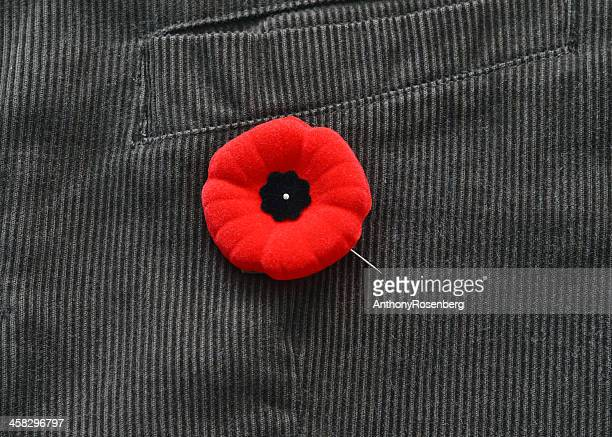 poppy on jacket - remembrance day stock pictures, royalty-free photos & images