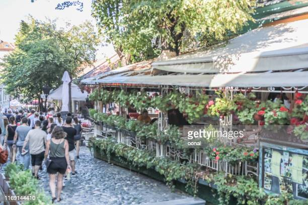 popular skadarska street in dorcol region in belgrad - belgrade stock pictures, royalty-free photos & images