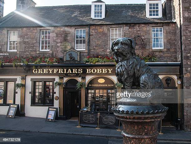 CONTENT] A popular tourist spot Greyfriars Bobby is one of Edinburgh's historical heroes having slept on the grave of his master Auld Jock Gray for...
