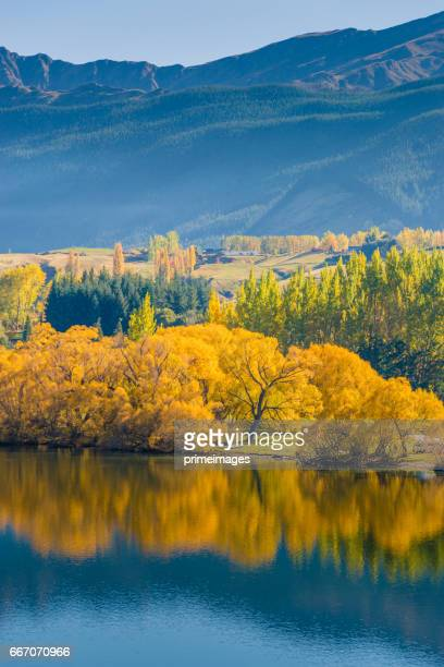 Popular view of hayes lake in new zealand