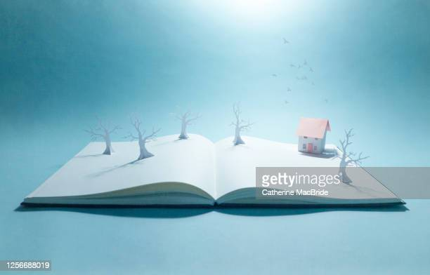 pop-up book with trees and paper home - catherine macbride stock pictures, royalty-free photos & images