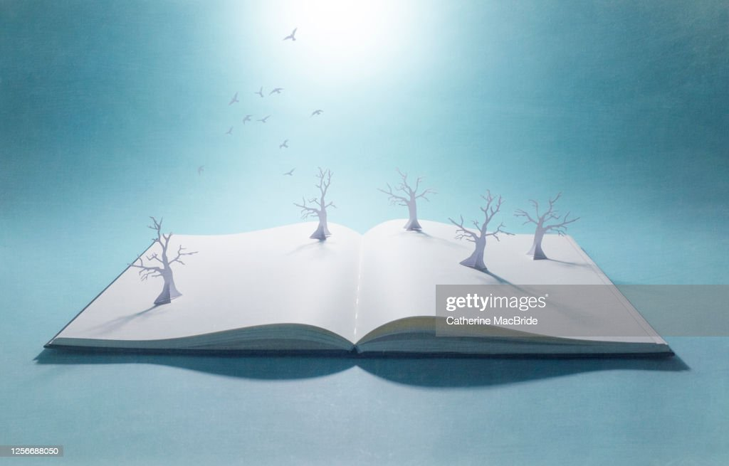 Pop-up book withpaper forest and flock of birds : Stock Photo