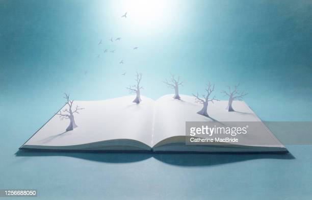 pop-up book withpaper forest and flock of birds - open stock pictures, royalty-free photos & images