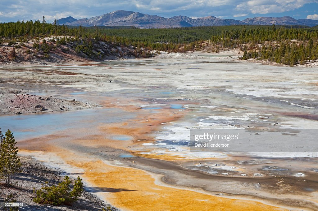 Porcelain Basin, Wyoming, USA : Foto stock