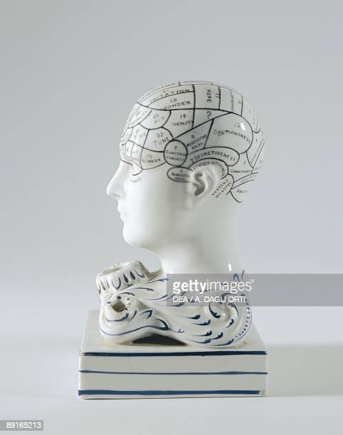 Porcelain inkwellin shape of phrenology head
