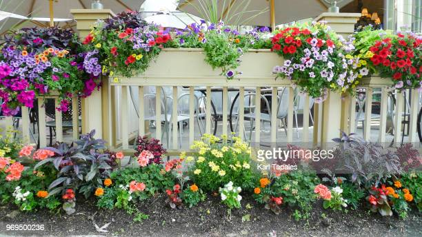 a porch with colorful flowers - flowerbed stock pictures, royalty-free photos & images