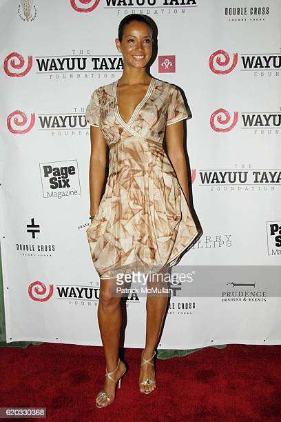 Porcha Coleman attends The Fifth Annual WAYAUU TAYA FOUNDATION Gala Dinner at The Bowery Hotel on June 5 2008 in New York City