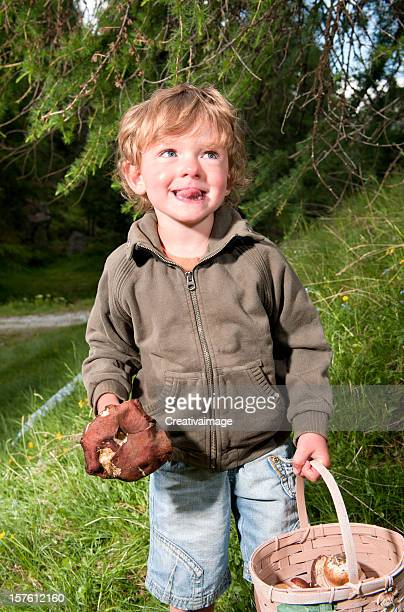 Porcini Mushroom picking