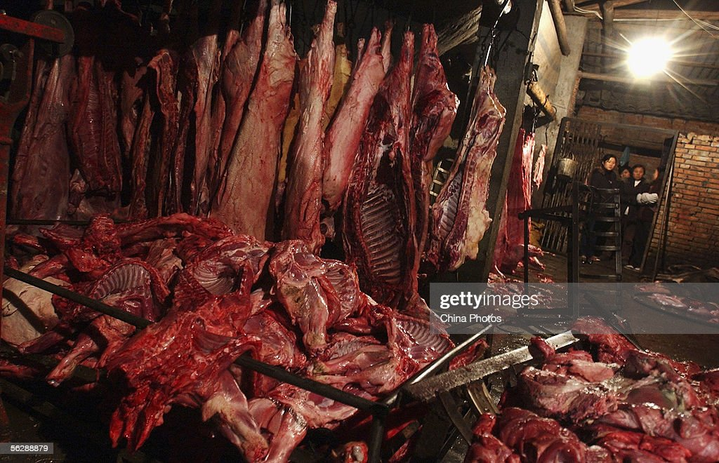 Livestock Confiscated From Two Illegal Slaughterhouses In Chengdu : ニュース写真