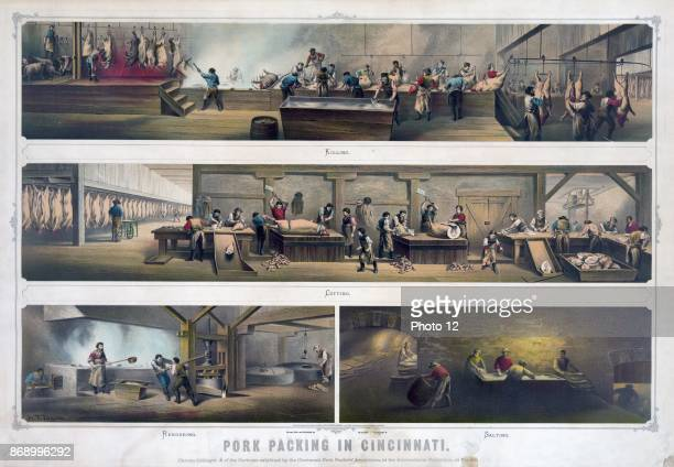 Pork packing in Cincinnati Print showing four scenes in a packing house Killing Cutting Rendering [and] Salting