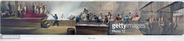 Pork packing in Cincinnati the Killing process From a print showing four scenes in a packing house Killing Cutting Rendering [and] Salting