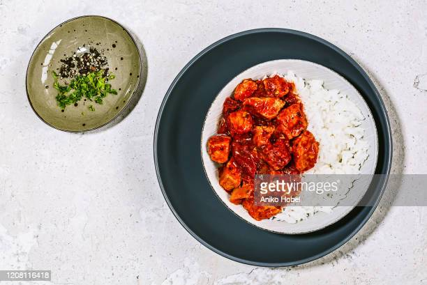 pork stew with rice - aniko hobel stock pictures, royalty-free photos & images