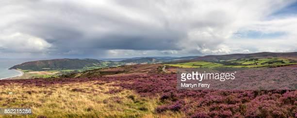 porlock bay panorama, porlock, exmoor national park, somerset, uk - ポーロック ストックフォトと画像
