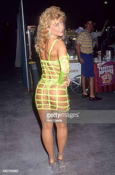 Porn star Nina Hartley attends the 11th Annual Video Software Dealers Association Convention and Expo on July 26 1992 at the Las Vegas Hilton...
