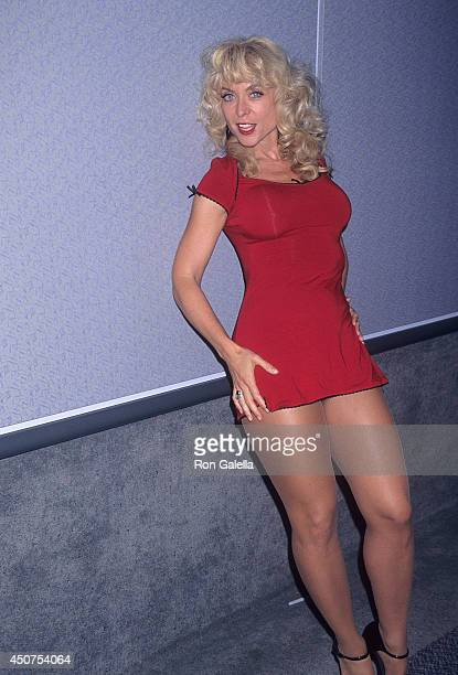 Porn star Nina Hartley attends the 15th Annual Video Software Dealers Association Convention and Expo on July 10 1996 at the Los Angeles Convention...