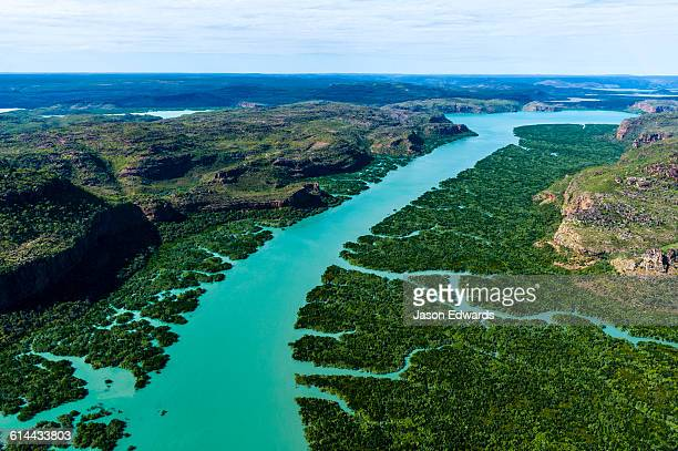 An aerial view of river tidal inlets winding their way through mangrove forests.