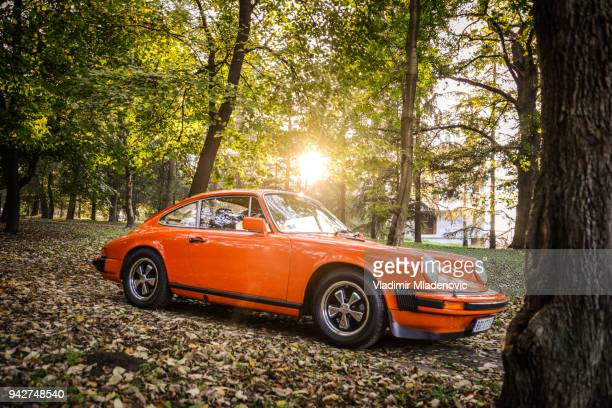 Porsche 911 carrera 2 in the woods