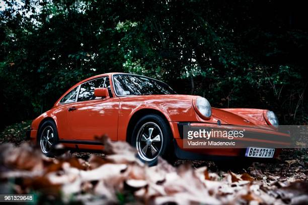 porsche 911 in the woods - porsche stock pictures, royalty-free photos & images