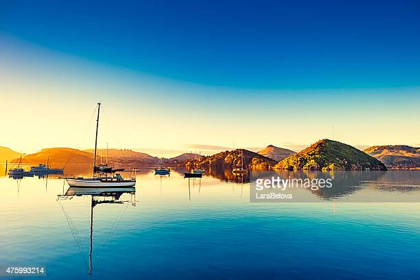 port chalmers at otago peninsula, new zealand. - harbour stock pictures, royalty-free photos & images