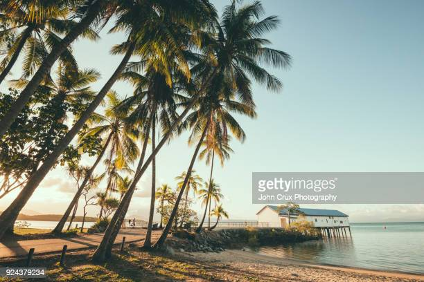 port douglas dock - cairns stock pictures, royalty-free photos & images