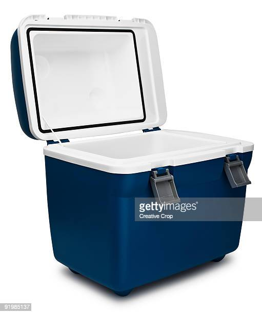 Portable refridgerated cooler box
