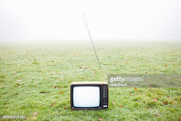 Portable television in field