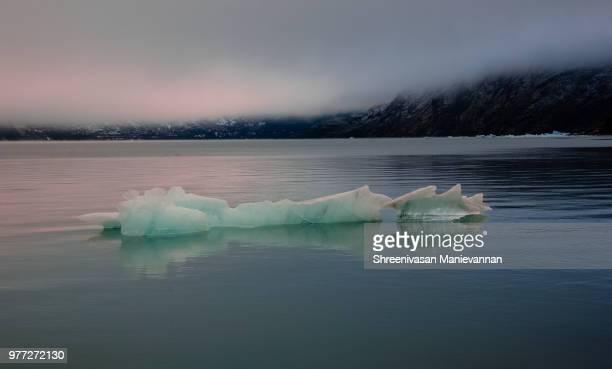Portage Glacier Icebergs