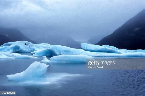 Kenai 半島のポーテージ氷河