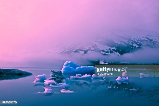 Portage Valley Glacier Lake
