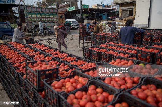 Porter carries baskets tomatoes coming from Iran at a vegetable market on the outskirts of Islamabad on August 19, 2020.