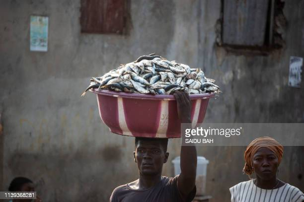 A porter carries fishes to the Goderich Market in Freetown on April 10 2019