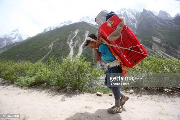 Porter carrying the luggage, Uttarkashi, Uttarakhand, India