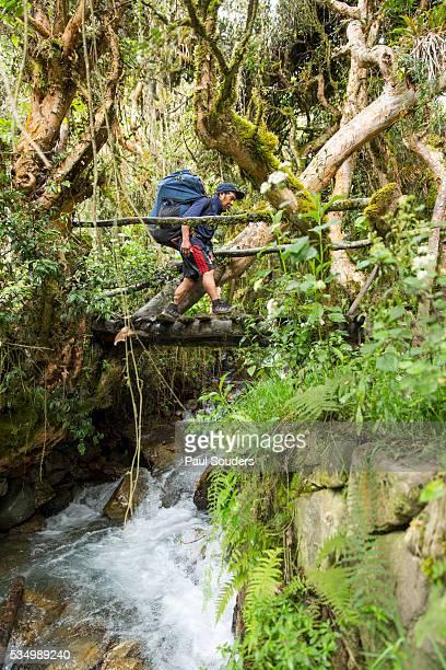 Porter Hiking on Inca Trail, Peru