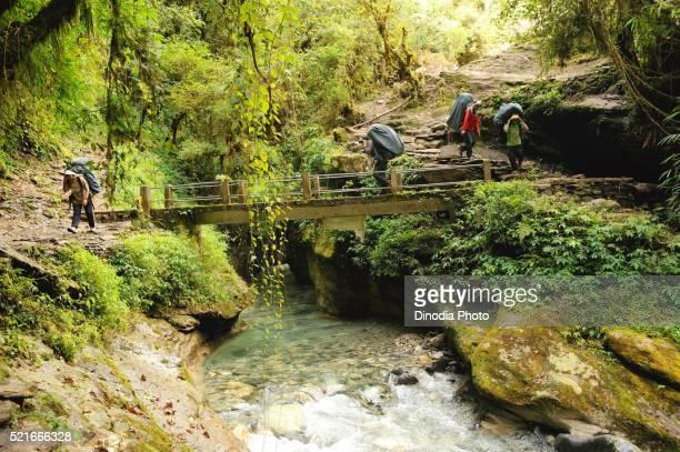 Porter with load crossing bridge above stream, Ghoripani, Nepal