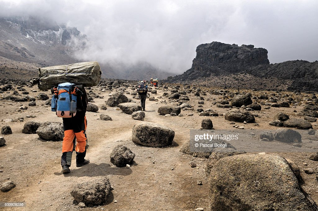 Porters near Lava Tower, Kilimanjaro National Park : Stock Photo