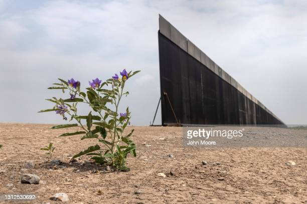 Portion of U.S.-Mexico border wall stands unfinished on April 14, 2021 near La Joya, Texas. President Joe Biden paused wall construction by executive...